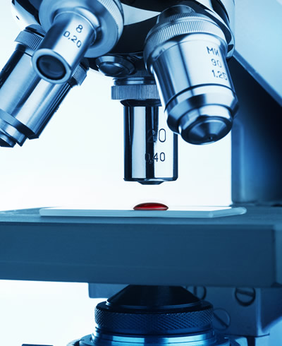 A pathologist examines prostate biopsies under a microscope